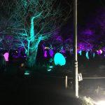 光と音の世界。チームラボ福岡城のプロジェクションマッピング