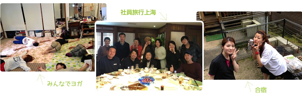 みんなでヨガ|社員旅行上海|合宿