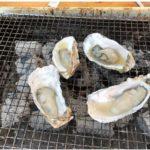 糸島の岐志漁港へ